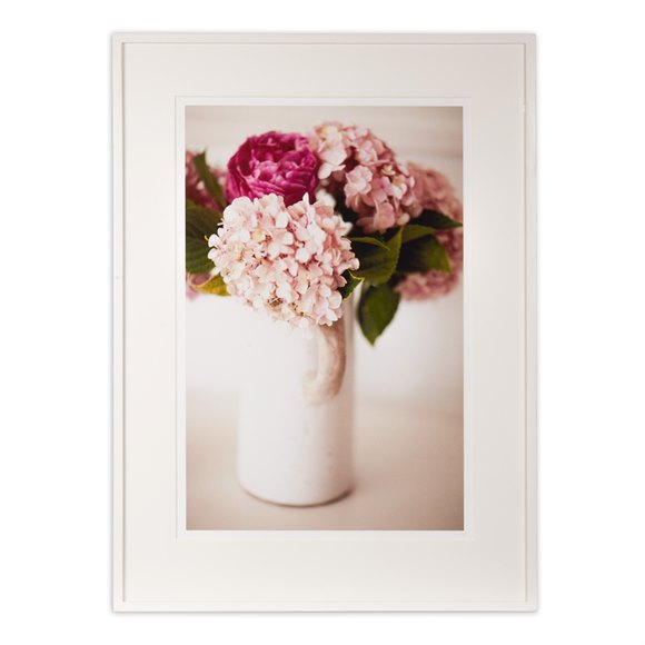 Pink Hydrangea by Claire Lloyd